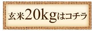 減農薬玄米20kg