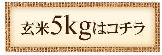 玄米5kgはこちら